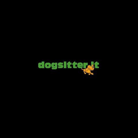 dogsitter e-commerce